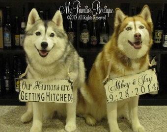 Save The Date Signs for the DOGS. Our Humans Are Getting Hitched. Photo Props. Rustic Save The Date.