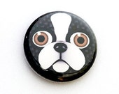 Boston Terrier One Inch Pinback Button, Magnet, or Keychain