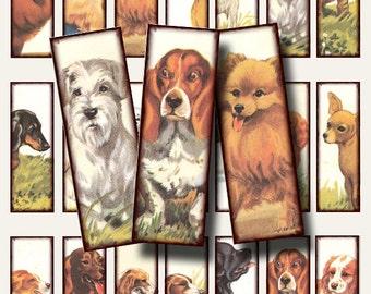 1940's Dogs.. 1 x 3 Inch Microslide Digital Collage Sheet no. 368