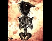 "Print 8x10"" - The Raven - Skeleton Skull Bird Dark Art Horror Macabre Lowbrow Art Pop Art Haunted Bones Anatomy Victorian Animal Gothic"