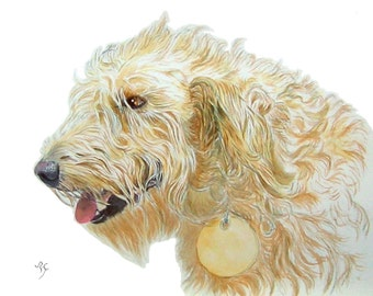 Cream Labradoodle giclee reproduction with name