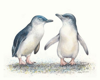 Fairy Penguins - art print Australian wildlife bird giclee print, nature decor
