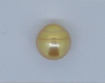 Golden South Sea Pearl, 13 mm diamter