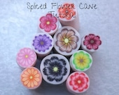 Tutorial, Polymer Clay Cane, Simple Spliced Flower, How to, DIY Supplies