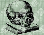 Digital Download Skull and Book Halloween Vintage graphic, digi stamp, Gothic, Scary Creepy Digital Transfer