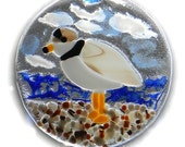Piping Plover Sun-Catcher