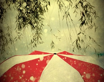 Red and White Umbrella Photograph, Grey, Black, Branches, Abstract, Cloudy, Rainy, 5x7 inch Fine Art Print