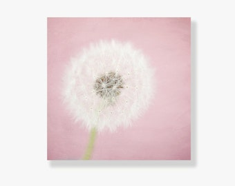 Pink Dandelion Canvas art, nursery decor, dusky pink, dandelion, shabby chic, childrens wall art, flower photo, dandelion photography