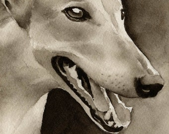 GREYHOUND Sepia Art Print Signed by Watercolor Artist DJ Rogers