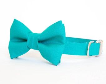 Dog Bow Tie Collar - Teal Gentleman's Collar