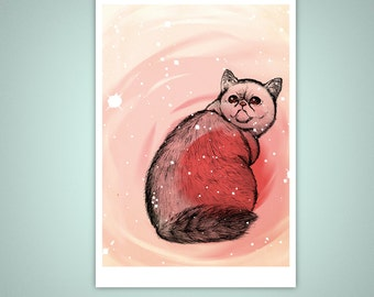 Hallucinating Exotic Shorthair Cat 5x7 Giclee Illustration Print
