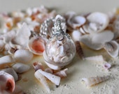 Miniature Shell Necklace