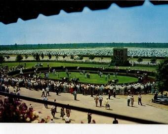 Horse Race Postcard Atlantic City Race Course  vintage postcard, Swiss stamp, Helvetia