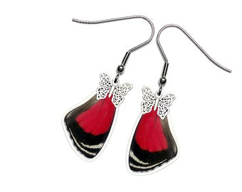 Real Butterfly Wing Earrings (Diaethria Clymena - 88 Butterfly Forewing - E183)