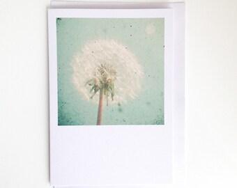 Dandelion Clock - Floral Blank Greetings Card for Her