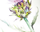 "Watercolor Painting, Original Botanical Art, Artichoke Bloom, 11""x15"""