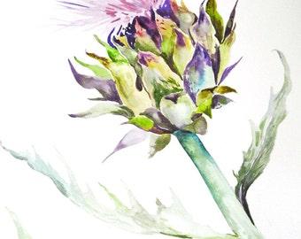 """Watercolor Painting, Original Botanical Art, Artichoke Bloom, 11""""x15"""""""