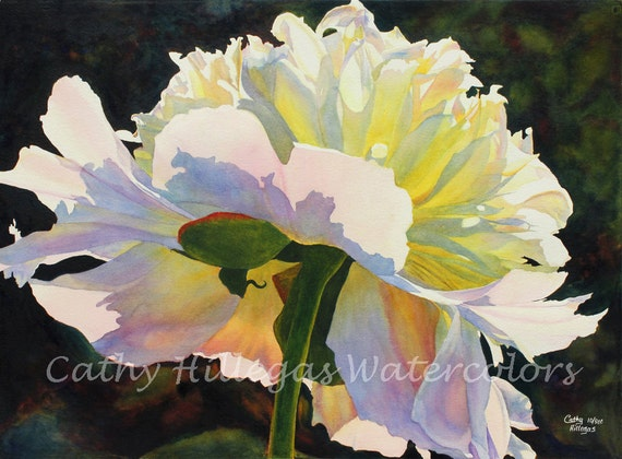 Peony Art Watercolor Painting Print by Cathy Hillegas, 8x10, watercolor print, floral watercolor, watercolor peony, white pink yellow blue