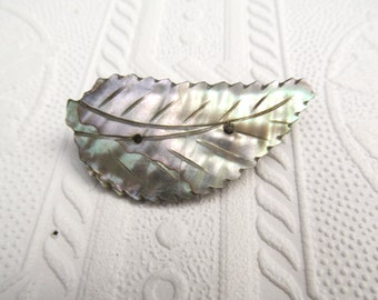 Antique Carved Abalone Mother of Pearl Sea Shell Leaf Brooch