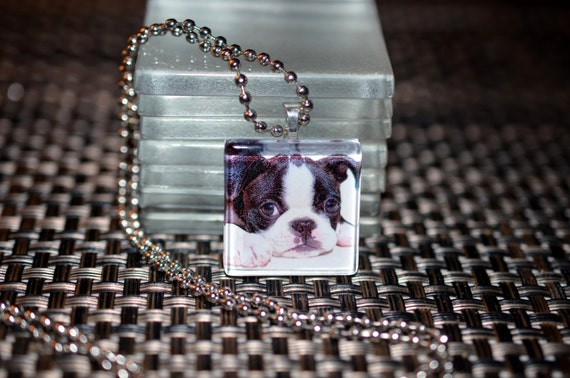 BOSTON Terrier dog glass photo pendant charm tile necklace dog rescue