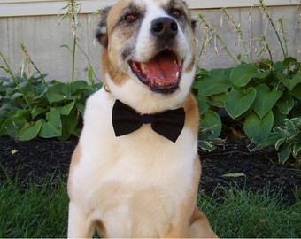 Dog Bowties Bow Tie doggie bowtie slider BLACK TIE FORMAL Pet Clothing tux ring bearer outfit party wedding attendant photo prop