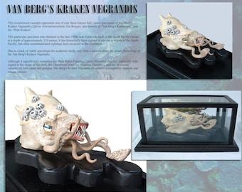 Van Berg's Kraken Vegrandis: preserved specimen of an near-extinct sea creature