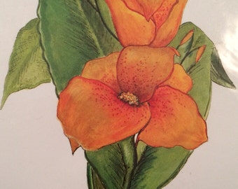 """Canna Lily Water Color  Print  8"""" x 10"""""""
