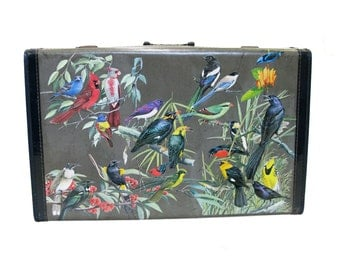 Aviary V Vintage Up-cycled Suitcase