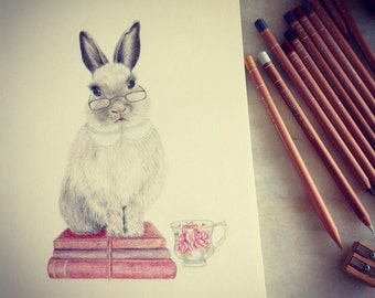 Clever rabbit illustration