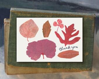 Thank You Ethan // Single Card // Fawnsberg Stationery