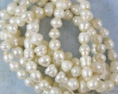Ringed Freshwater Pearl Beads 60% off, qty 48