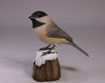 Black-capped Chickadee on Wooden Snowy Base