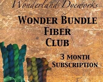 Wonder Bundle Fiber Club - hand dyed wool silk roving - spinning and felting fiber - 3 month membership - Wonderland Dyeworks Fiber Club