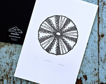 Sea Urchin / Echinoida 'specimen' (noir) - Limited edition one-colour screenprint