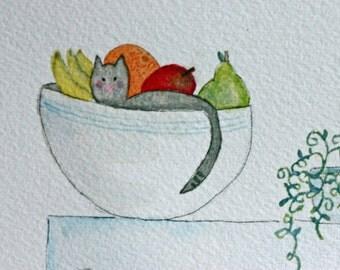 Cat in Fruit Bowl, original art, watercolor, kitchen art, humorous, simple, refrigerator, whimsical, grey kitten, cat