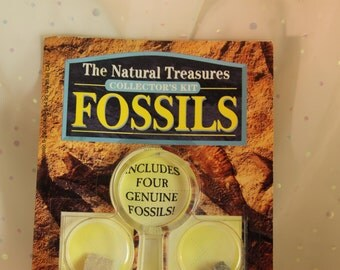Childs Fossil Book, Collector's Kit 4 Unopened Fossils Magnifying Glass Scholastic Inc Petrified Wood Fossil Algae Gastropod Dinosaur Bone