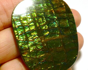 Ammolite Cabochon Stabilized Large Vibrant Green Designer Freeform Korite Ammonite Alberta Canadian Precious Gemstone Pendant Rare Opalized