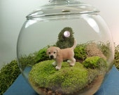 Small Covered Vase Terrarium, Golden Retriever Puppy, Moss.  Great for HOME or OFFICE.  Terrariums by mossterrariums on Etsy.
