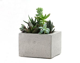 SALE: Square Concrete Mini Planter