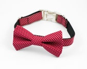 Dark Red Pin Dot Bow Tie Dog Collar
