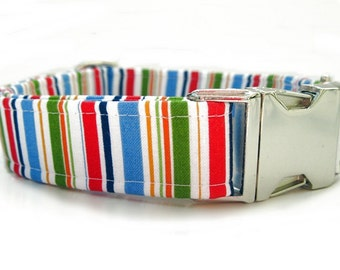 Summer Stripes Dog Collar with Nickel Plate Hardware