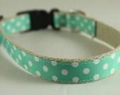Hemp Dog Collar - White Dots on Turquoise - 3/4in