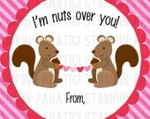 Nuts Over You. Printable. DIY. 3 Inch Square Valentine. You print. Squirrels. Squirrel. Nut. Nuts. Heart. Bunting. Banner. Hearts. Red. Pink