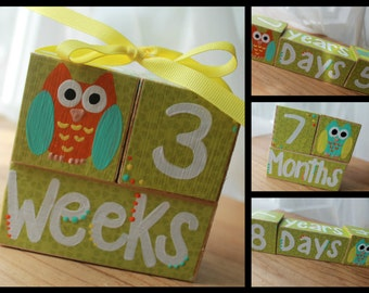 Baby Age Blocks- Baby Photo Blocks- Owl Theme Growth Block- Day- Month- Year- Baby Milestone Block- Baby Shower Gift