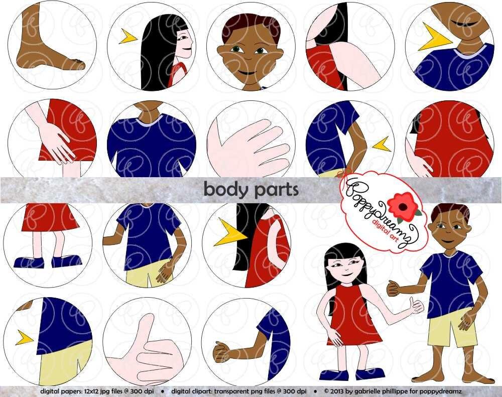 Body Parts Clipart Set 300 dpi School Teacher Clip Art