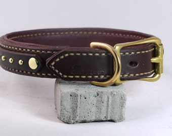 Small Classy Brass Dog Collar - Leather Dog Collar with Spots - Padded leather dog collar - handmade collars for dogs - stitched many colors