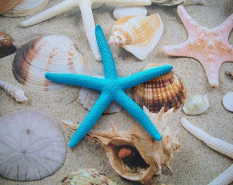 STARFISH BOBBY PIN - mermaid hair, seaside wedding, nautical beach sand, ocean bridal shower, anniversary gift, beach wedding gift