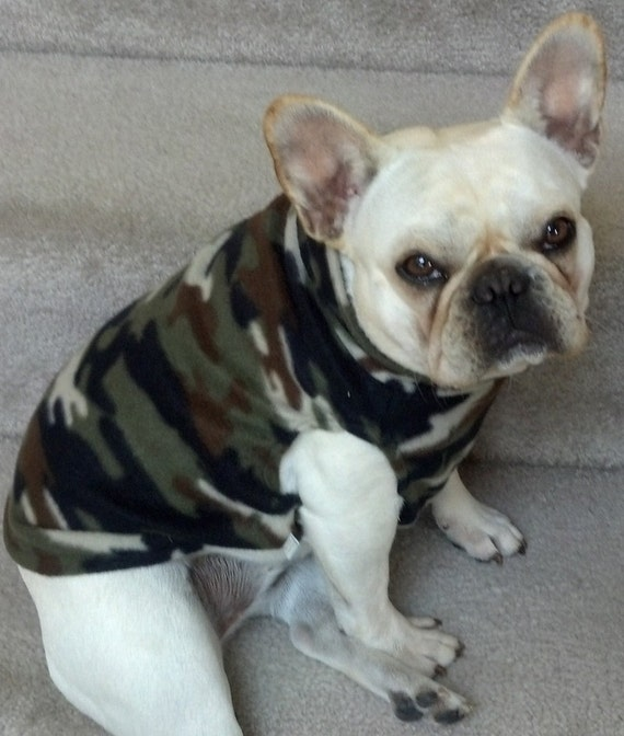 french bulldog jacket french bulldog camo fleece pullover jacket by thefabfrenchie 7660