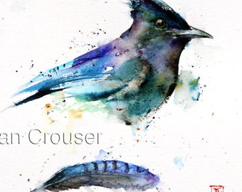 STELLER'S JAY & FEATHER Watercolor Print by Dean Crouser