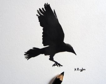 Jackdaw original charcoal sketch, original art, charcoal drawing, pencil drawing, crow drawing, bird drawing, crow art, bird art,
